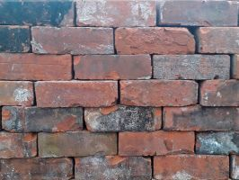 Reclaimed Perforated Wirecut Bricks from Hull